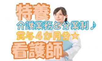 【大阪市東淀川区】看護職員(正社員)井高野の特養で勤務♪介護と分業制だからこその良い関係・環境がある◎s-oohy-n1-bo イメージ