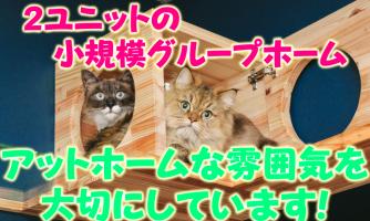 【大阪市西成区】介護スタッフ(契約社員)2ユニットの小規模施設♪アットホームな雰囲気を大切にしています◎k-onn-h8-kyo イメージ